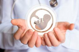 En el Día Mundial de la Salud: La salud reproductiva
